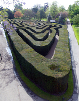 The UK's oldest surviving hedge maze